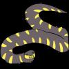 Gold-Ringed Cat Snake