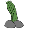 "<a href=""https://fanteles.com/world/items?name=Green Algae"" class=""display-item"">Green Algae</a>"
