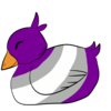Gray Ace Duckling